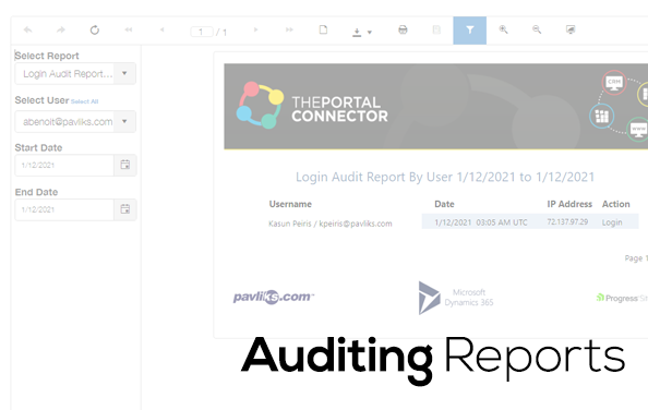 Auditing-reports