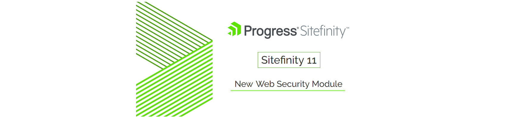 Sitefinity 11 Web Security Module